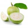 Guava Eliquid