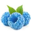 Blue Raspberry Eliquid